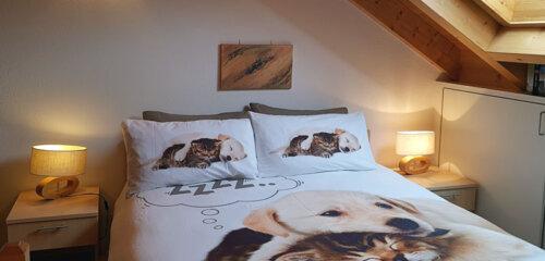 Cà Rivoi - Wohnung Lucomagno - Zimmer